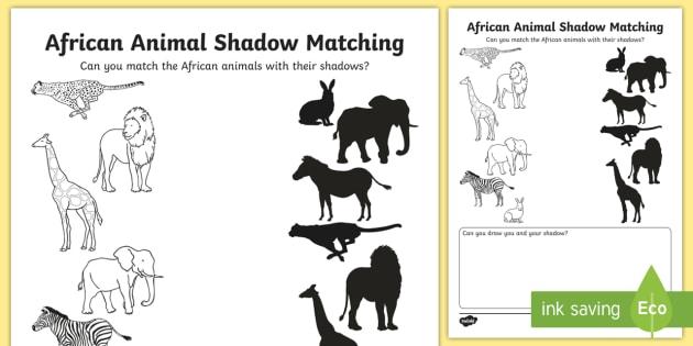 African Animal Shadows Matching Worksheet   Worksheet