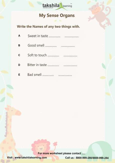Worksheets For Class 1 Evs Ncert & Cbse