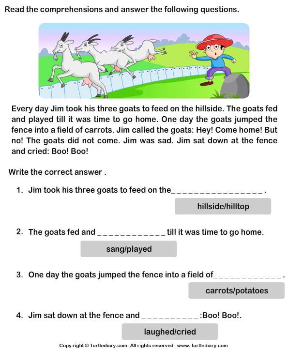 Reading Comprehension Stories 5 Worksheet