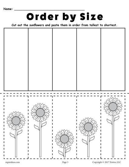 Free Printable Sunflower Ordering Worksheets  Shortest To Tallest