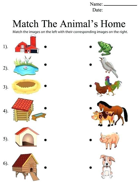 Animal Matching Worksheet For Kids Parts Worksheets Kindergarten