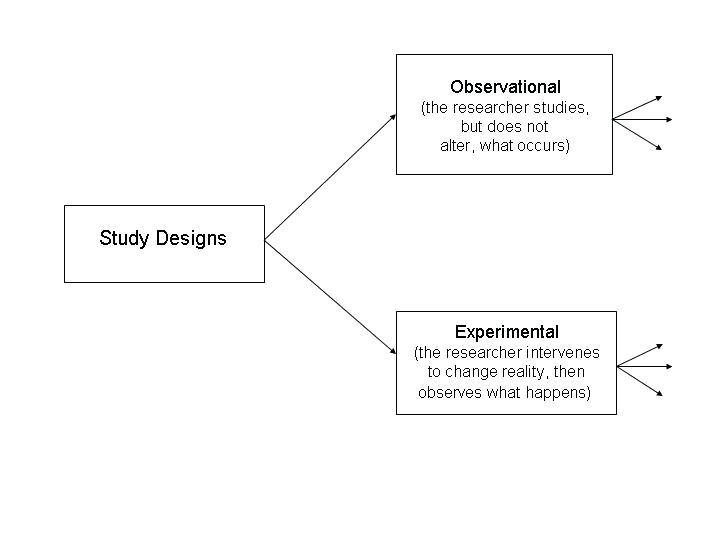Design An Experiment Worksheet Experimental Design Explore