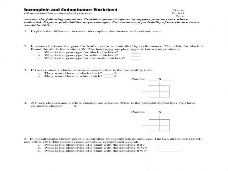 Mendelian Genetics Worksheet Answers