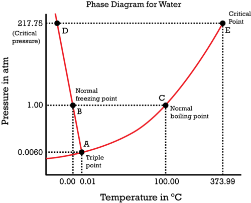 Phase Diagram For Water Read Chemistry – Siteraven