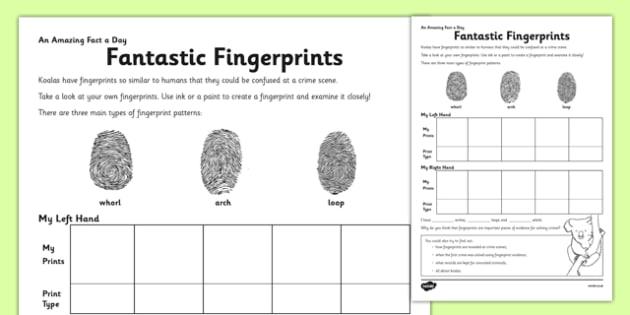 Fantastic Fingerprints Worksheet   Worksheet