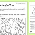 Tree Parts Worksheets
