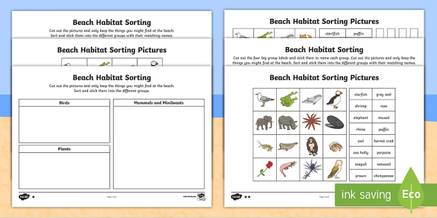 Ks1 Beach Habitat Sorting Differentiated Worksheet   Worksheets