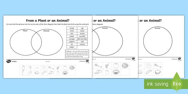 Animal Or Plant Sorting Differentiated Worksheet   Worksheets