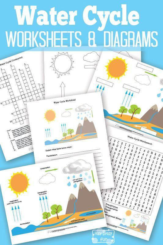 Free Printable Water Cycle Worksheets + Diagrams