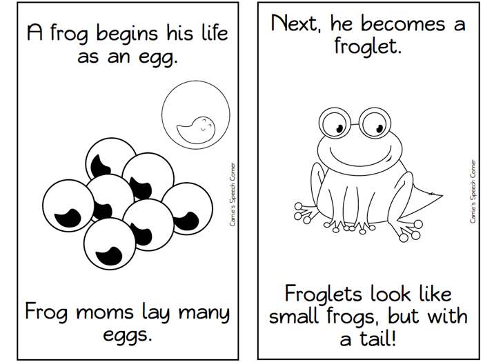13 Frog Life Cycle Resources And Printables