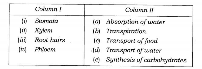 Ncert Solutions For Class 7 Science Chapter 11 Transportation In