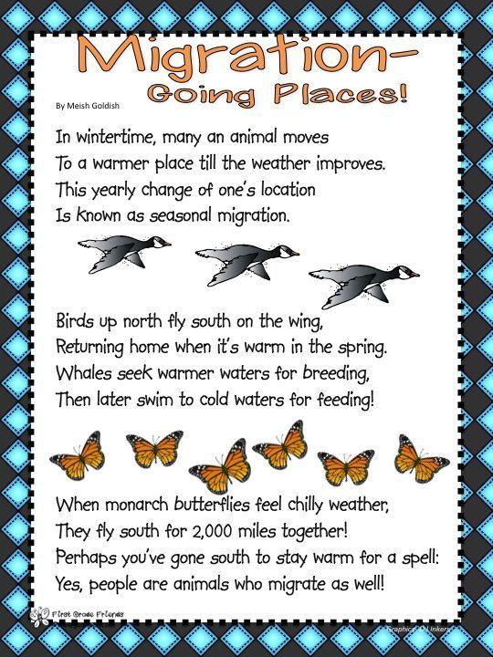 Image Result For Bird Migration Worksheets