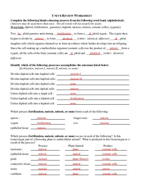 Answers To Unit 6 Review Worksheet
