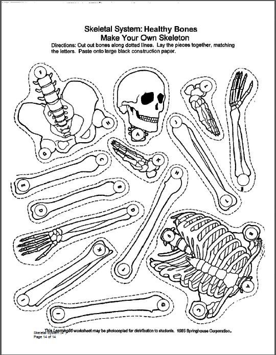 P  14 Of A Study Guide For 4th Grade Via Westerndairyassociation