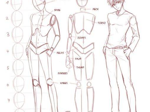 Manga Proportion Drawings  6 Worksheets  By Gdoolan84