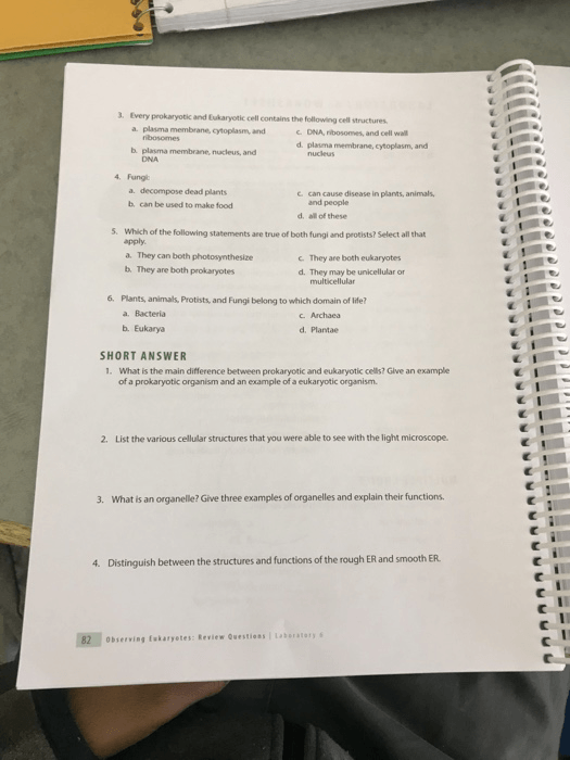 Solved  Laboratory 6  Worksheet Name Section  Date Instruc