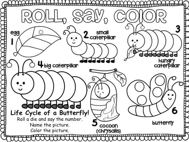 Animal Life Cycle Worksheet For Kids