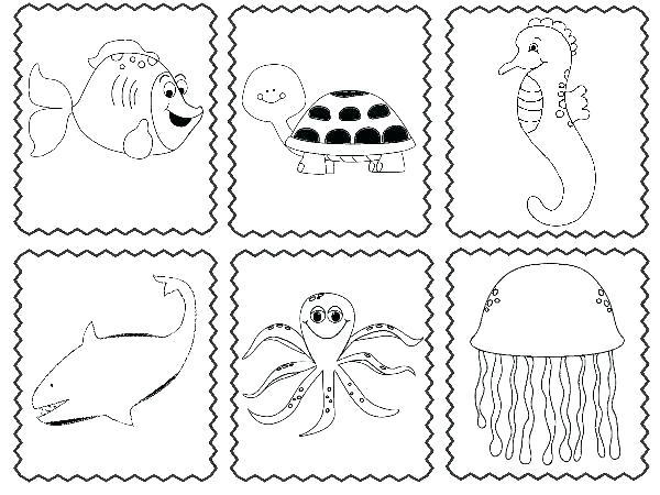 Sea Animals Worksheets For Preschoolers Sea Animals Worksheets For