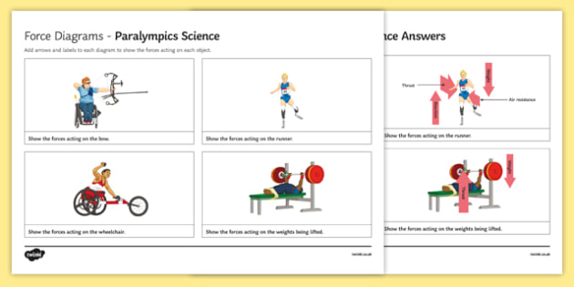 Force Diagrams Olympic Science Worksheet   Worksheet, Worksheet