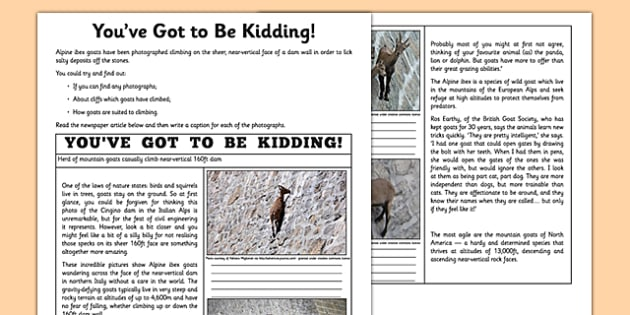 You've Got To Be Kidding Me! Newspaper Article Worksheet
