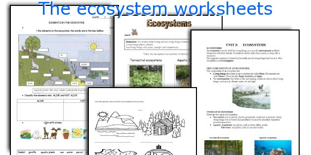The Ecosystem Worksheets