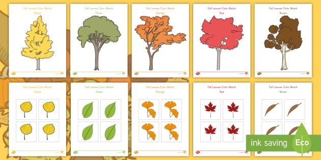 Fall Leaves Color Match Worksheet   Worksheets