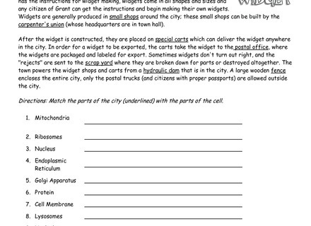 Cell City Worksheet Answers