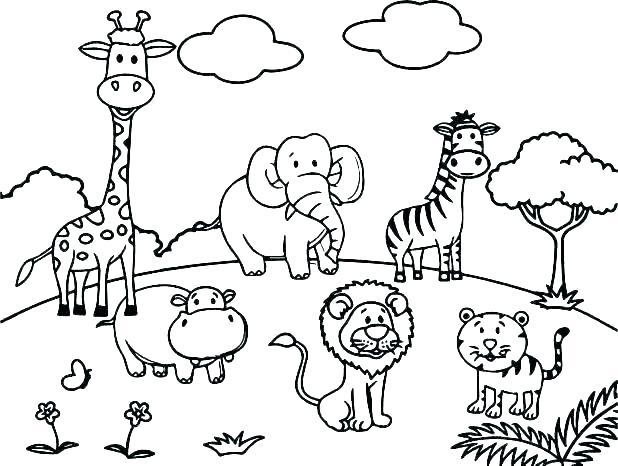 Zoo Worksheets For Preschoolers