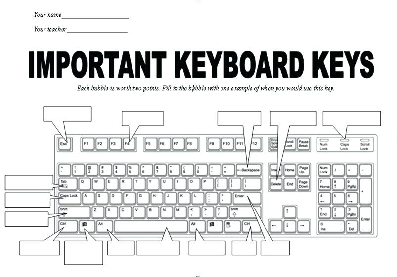 Computer Worksheets For Grade 4 Free Printable Keyboarding 3rd