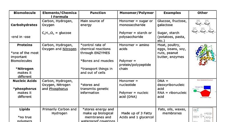 Organic Chemistry – Carbon Chemistry And Macromolecules