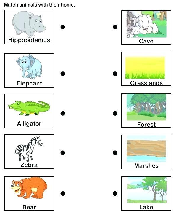 Animals And Their Habitats Worksheets Animal Habitat Matching