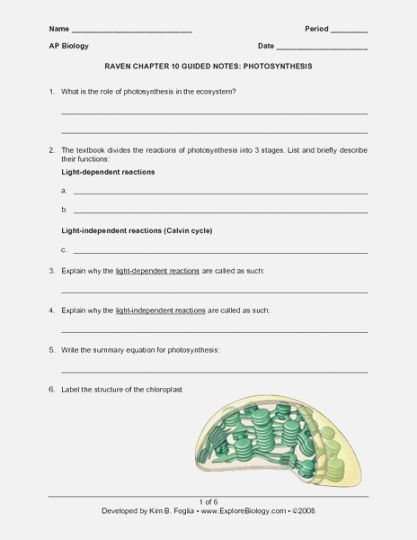 41 Inventive 41th Grade Science Worksheets Free Printable