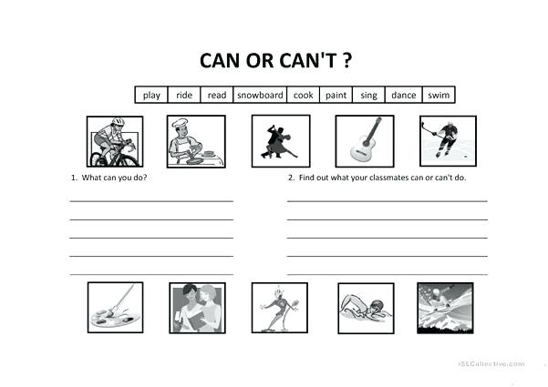 Can And Can T Worksheets