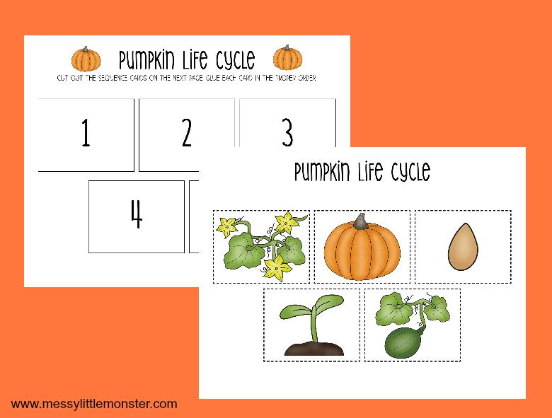 Printable Pumpkin Life Cycle Worksheets