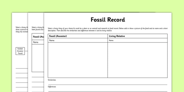 Differentiated Fossil Record Worksheet   Worksheet