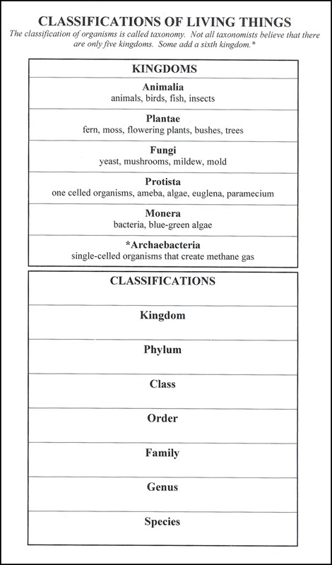 Classification Of Living Things (6  X 9  Laminated Chart), Student
