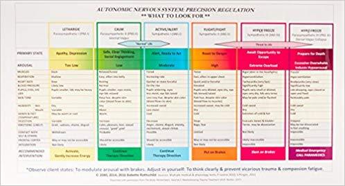 Amazon Com  Autonomic Nervous System Table  Wall Poster
