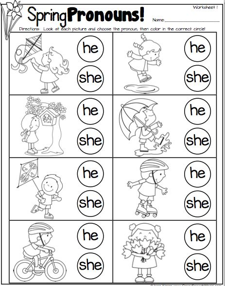 Spring Pronouns Freebie!