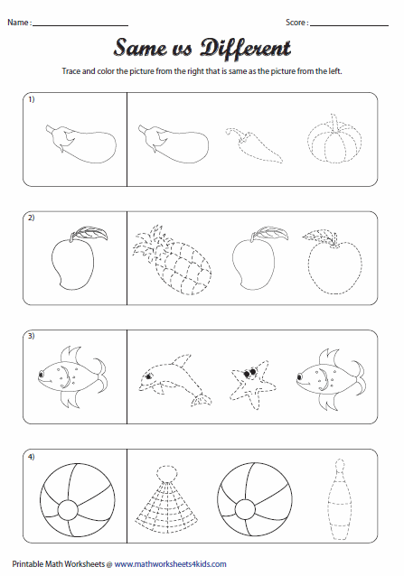 Group Objects That Are Alike Worksheet