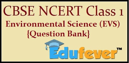 Download Cbse Class 1 Evs Question Bank In Pdf  Get Free Pdf
