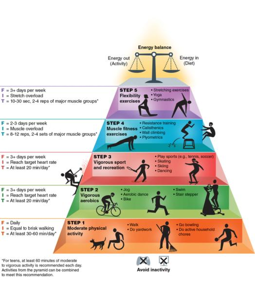 Fitness For Life, Sixth Edition  The Physical Activity Pyramid