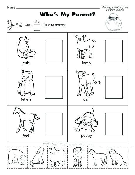 Farm Animals Worksheets Kindergarten Gallery Super Teacher Wild