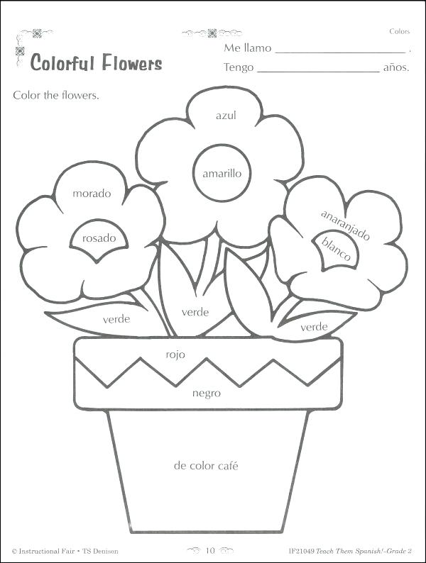 Indefinite Pronouns Worksheet Math Circle The Pronouns Worksheet