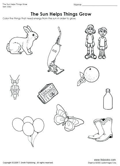 Kindergarten Science And Thinking Skills Worksheets Thumbnail Of