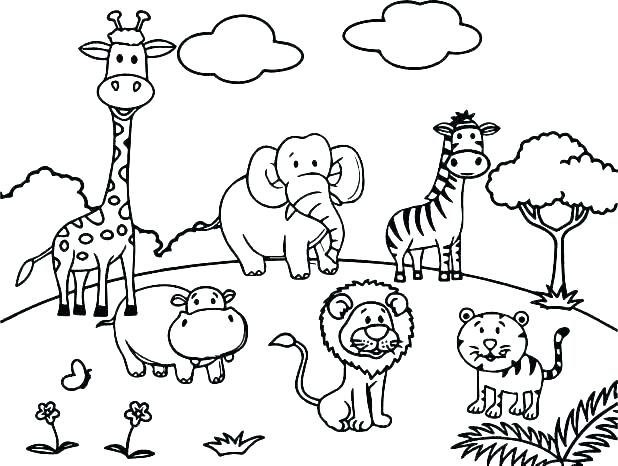 Zoo Animals Worksheets Animal Coloring Free Printable Summer Pages