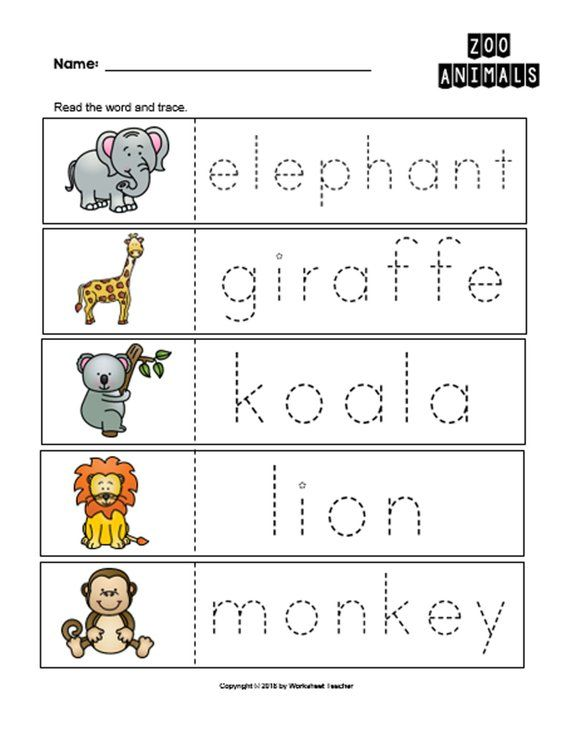 Zoo Animal Worksheets For Preschoolers