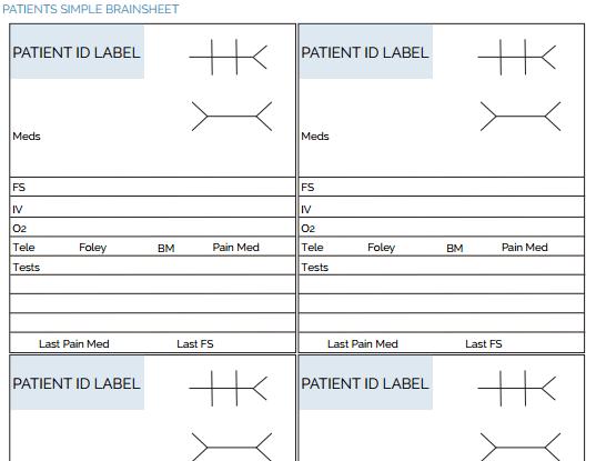 The Ultimate Nursing Brain Sheet Database (33 Nurse Report Sheet