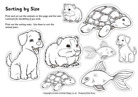 Pets Sorting Big And Small