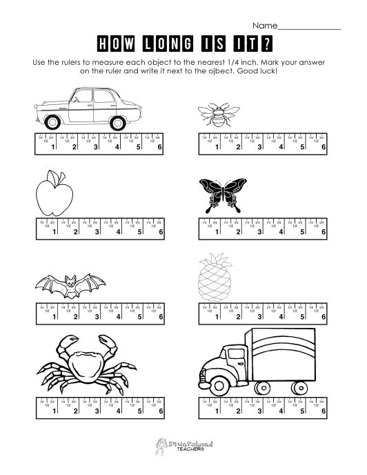 Ruler Worksheet 1