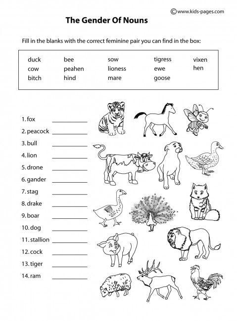 Animals Gender B&w Worksheets